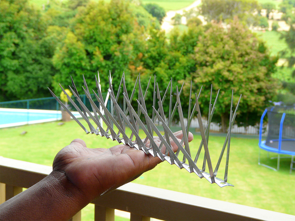Bird Deterrent Specialists   Products