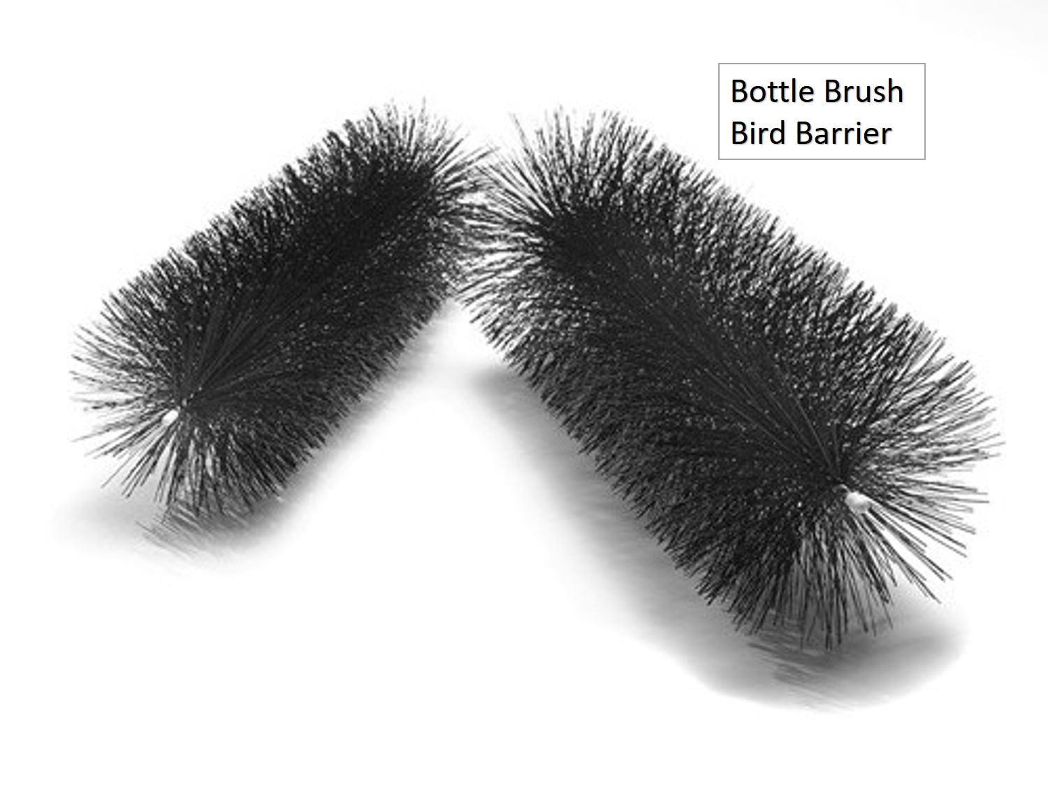 Bottle Brush Bird Barrier