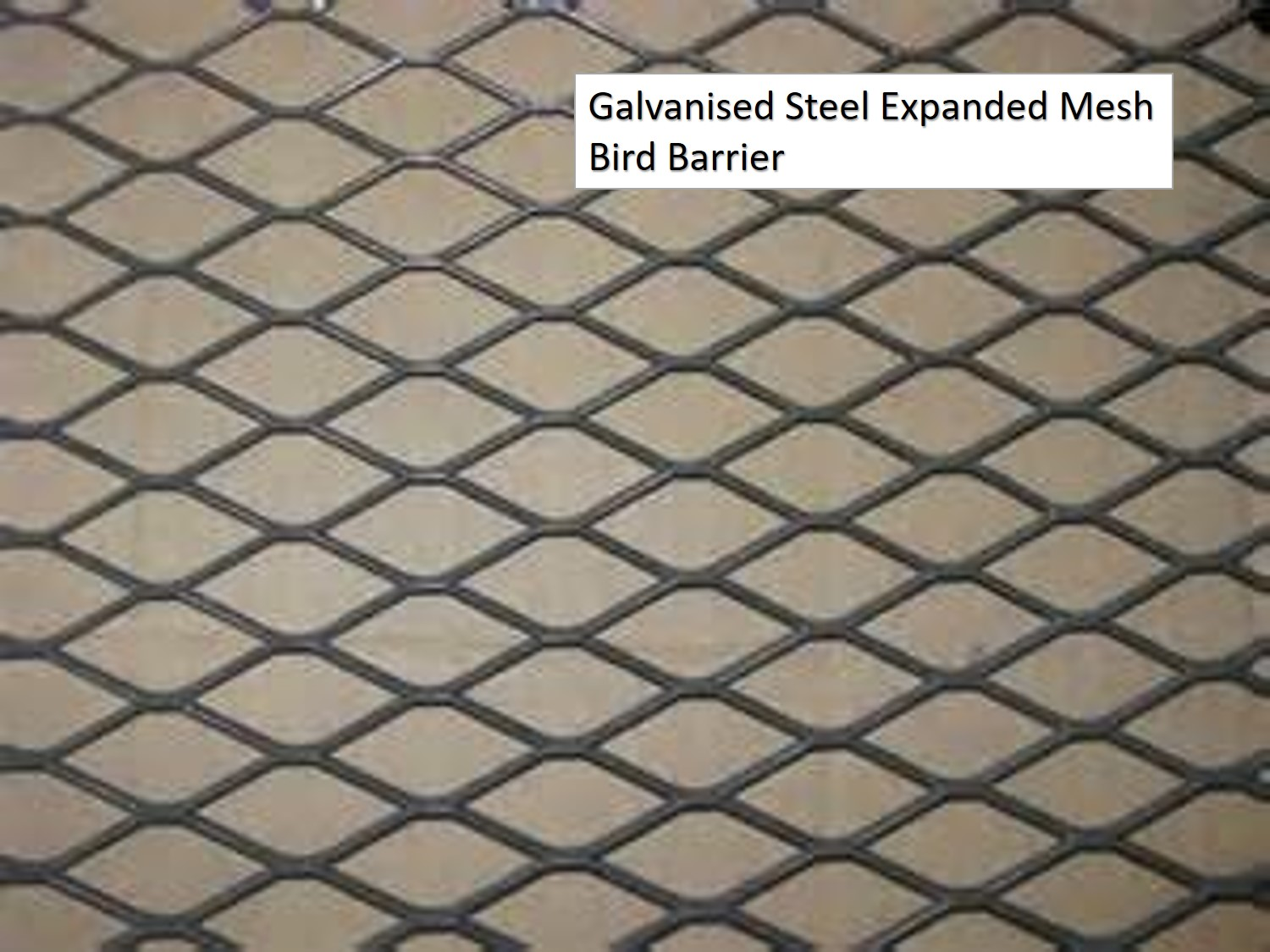 Galvanised Steel Expanded Mesh Bird Barrier
